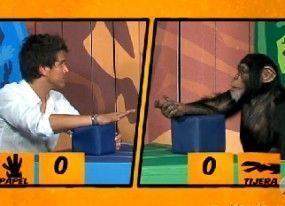 Neox tv chimpances
