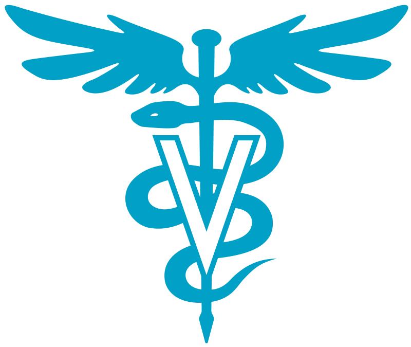 consulta profesionales veterinarios