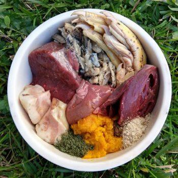 manual practico dieta barf